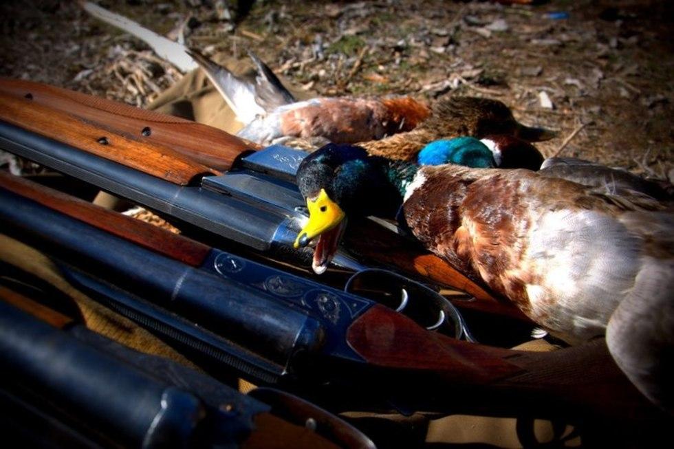 Вячеслав Володин поручил разработать законопроект, который облегчит жизнь охотникам