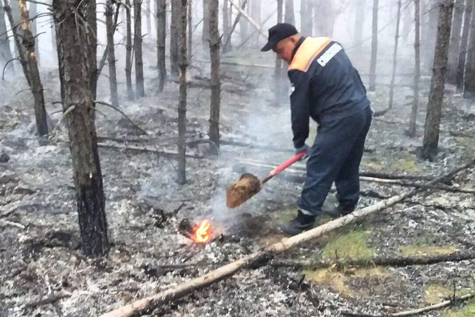 В Марксовском районе тушат лесной пожар