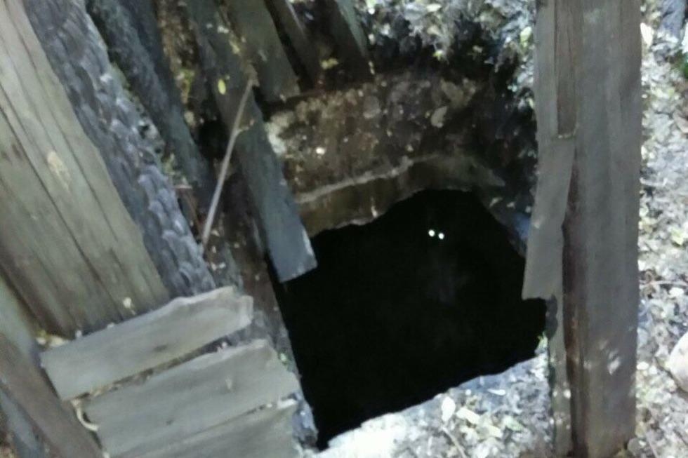 Спасатели вытащили собаку, провалившуюся в подвал сгоревшего дома