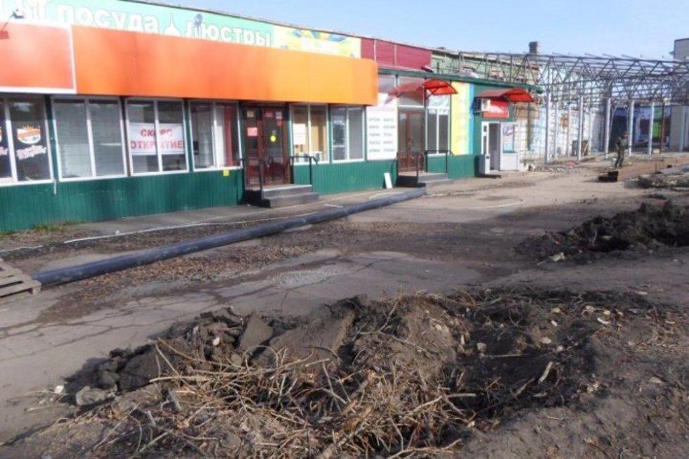 В Балашове местные власти «забыли» об обещании высадить новые деревья на месте вырубленных