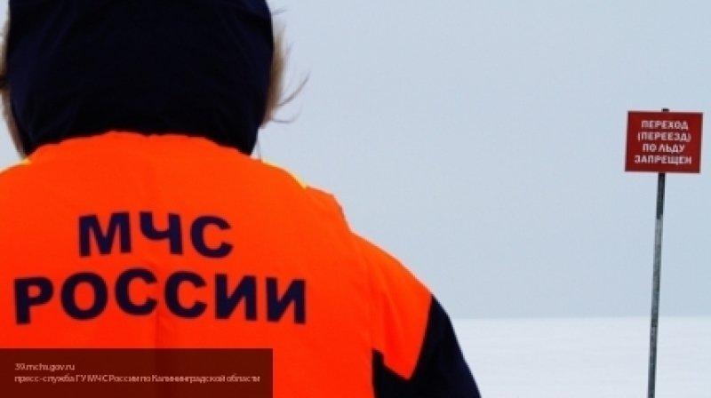 Медаль МЧС России за спасение тонувшего сверстника получил 9-летний вологжанин
