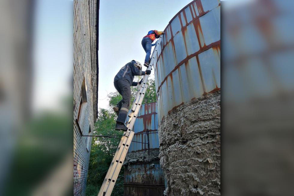 В Саратове ребенок застрял на 6-метровой высоте. Ему потребовалась помощь спасателей