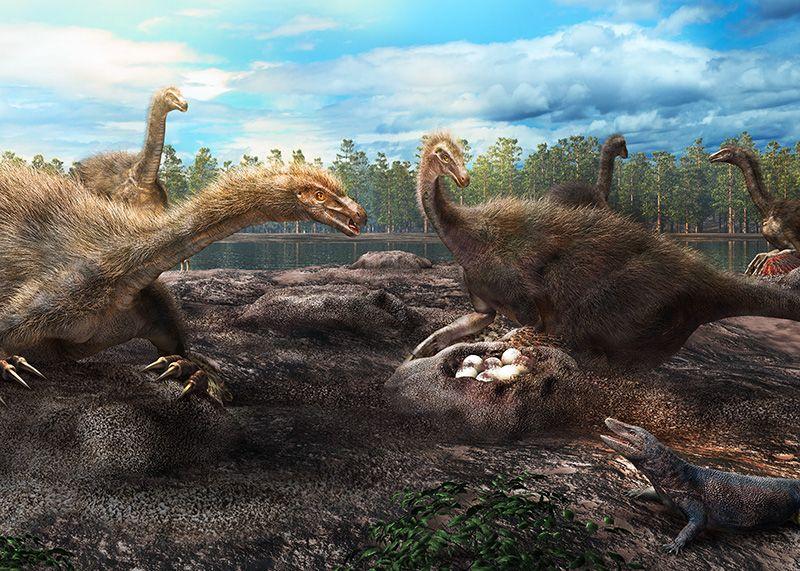 Динозавры охраняли свои яйца