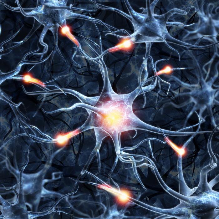 Болевой сигнал зависит от внутреннего опиоида