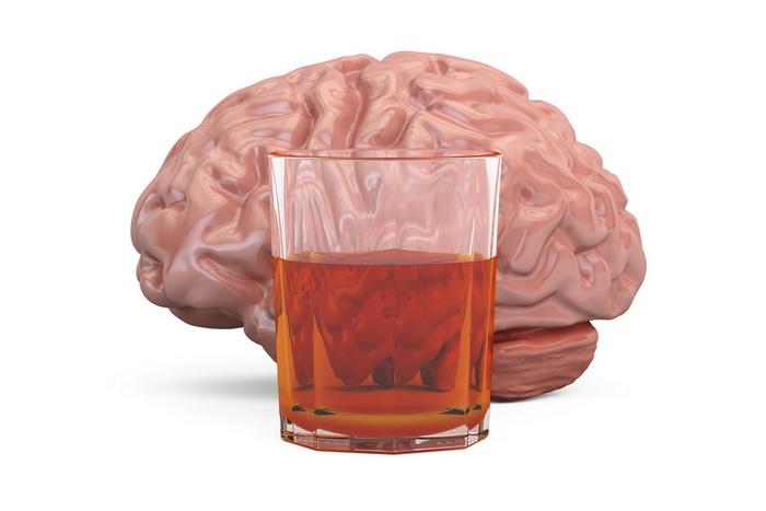 Почему у алкоголиков маленький мозг