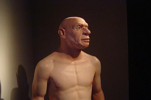 Неандертальцы могли исчезнуть без помощи человека разумного
