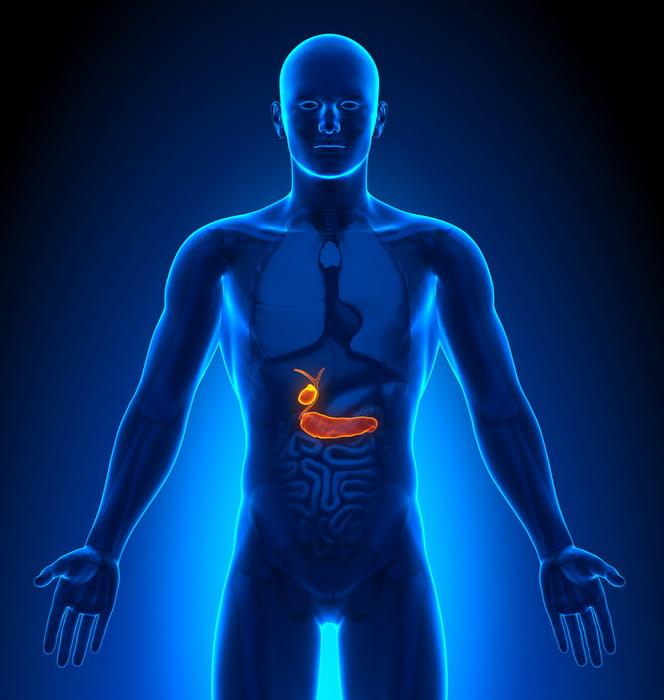 Биологические часы против диабета