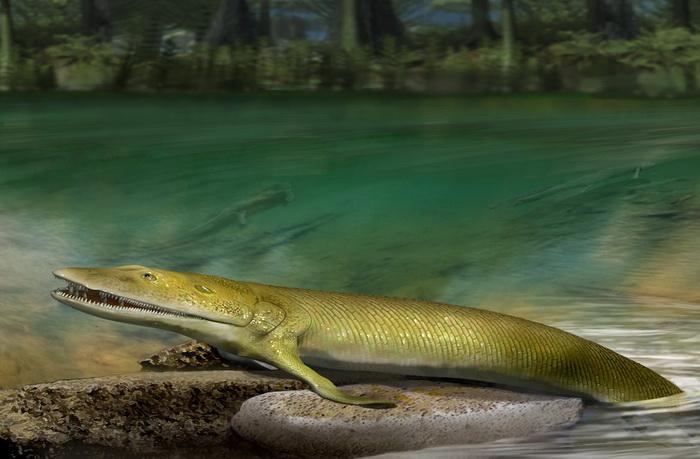 В Канаде нашли рыбу с пальцами