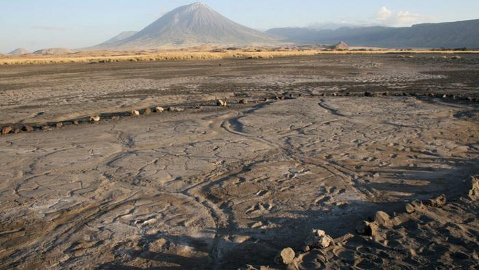 В Танзании нашли несколько сотен отпечатков древних ног