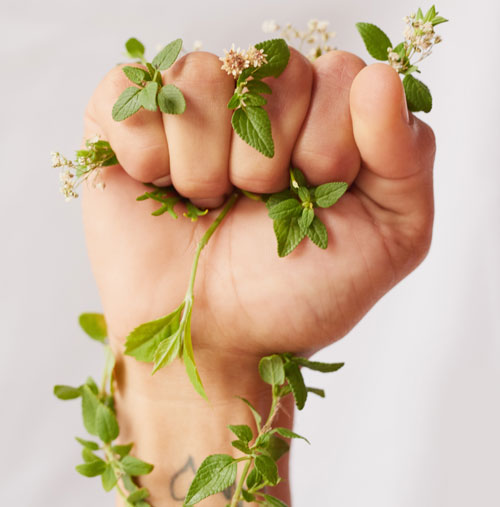 Программа L'Oréal для защиты окружающей  среды и женщин, оказавшихся в трудной жизненной ситуации
