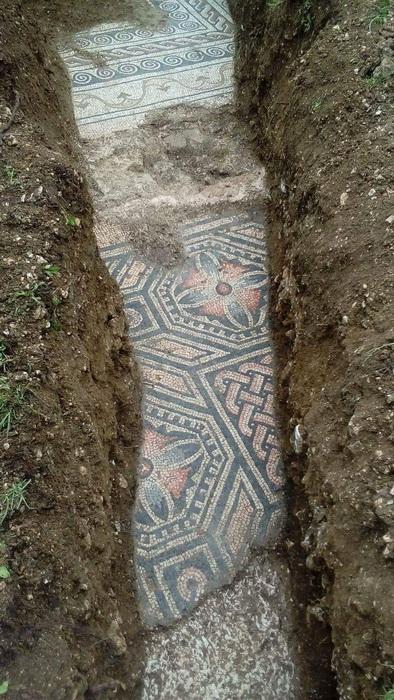 Под виноградником около Вероны нашли римскую мозаику