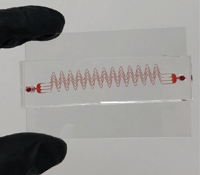 Тромбы в сосудах можно предсказать по течению крови