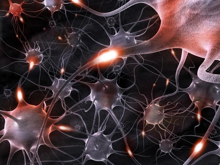 Как защитить нервные клетки при инсульте