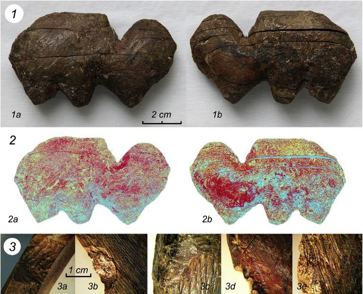 Как жители Восточной Сибири вырезали фигурки из кости 20 тысяч лет назад