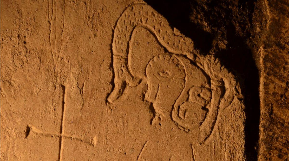 В Переславле-Залесском нашли рисунок фантастического животного XII века