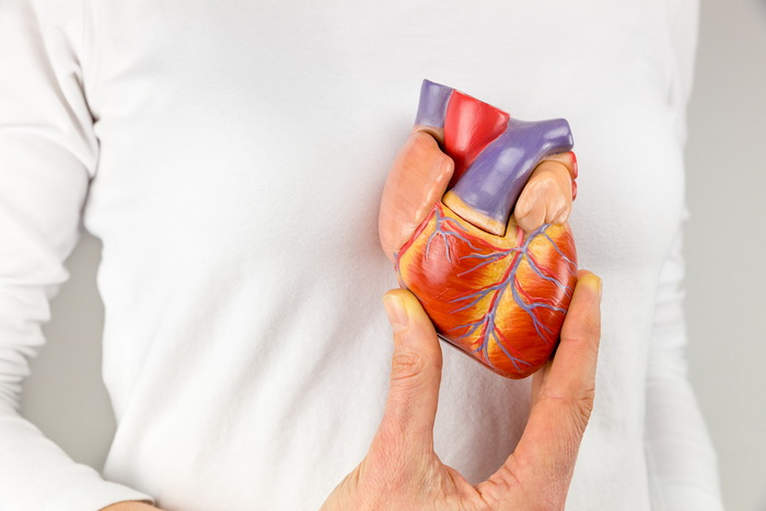 Когда жир помогает сердцу