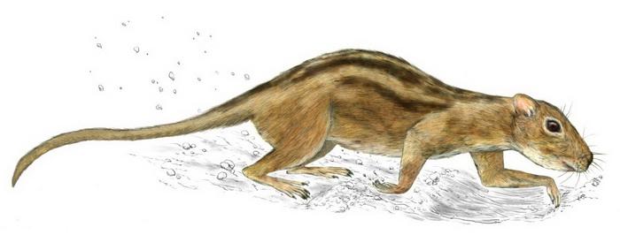 Звери стали социальными ещё при динозаврах