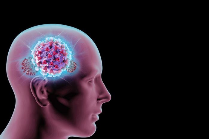 Новый коронавирус проникает в мозг