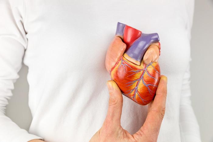 сердце.jpg