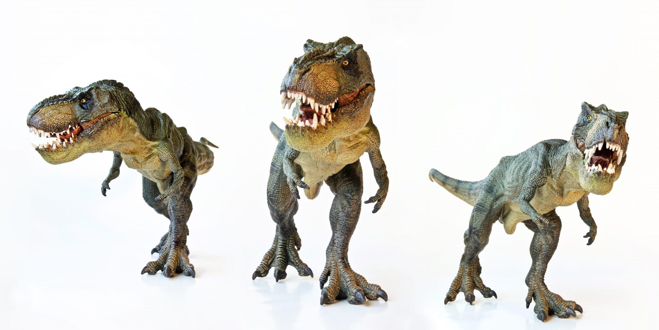 Почему среди динозавров не было хищников среднего размера?