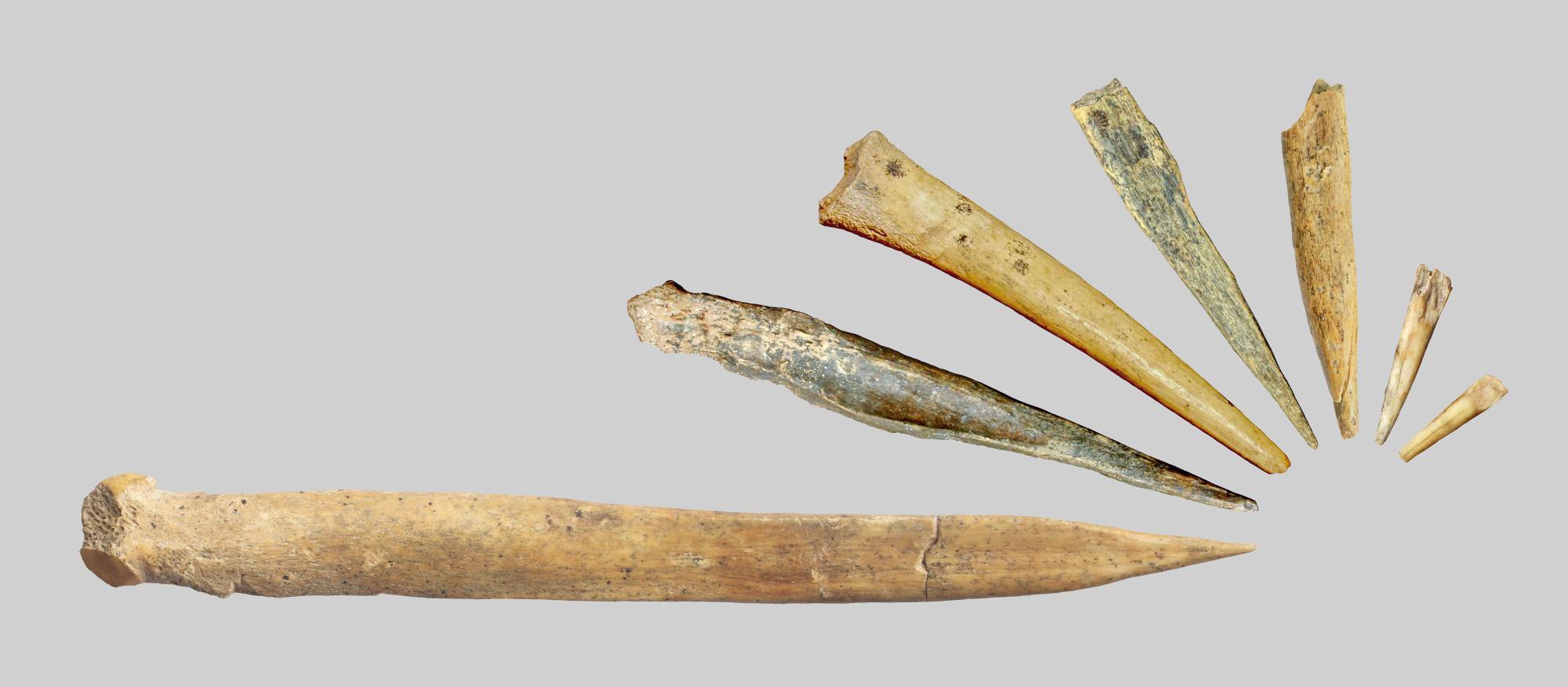 Костяные иглы помогли древним людям освоить Сибирь