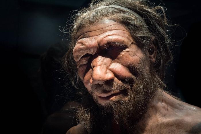Европейские встречи неандертальцев и людей